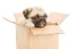 Megbízható költöztetést vehet igénybe elérhető árakon.