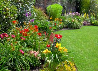 Profi kertgondozást igényelhet elérhető árakon.