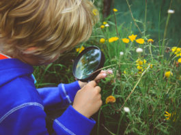 Négy az egyben élménytábor: Minden, ami érdekelheti gyermekeit!
